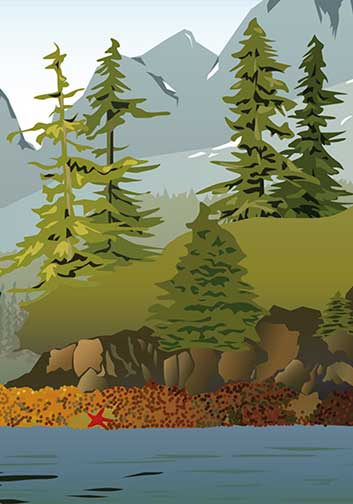 vector illustrations alaska designer
