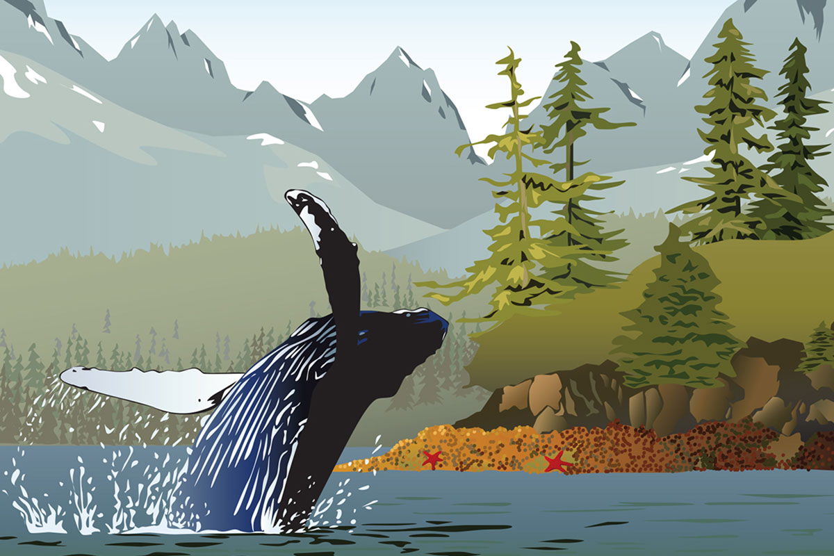 Vector Illustrations Graphic Design Alaska